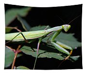Praying Mantis Tapestry