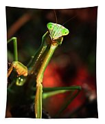Praying Mantis Portrait Tapestry