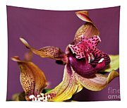 Pretty Orchid On Pink Tapestry