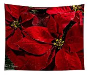 Pretty Poinsettias  Tapestry