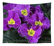 Primrose Purple Tapestry