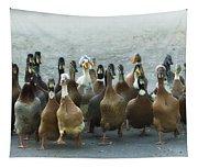Professional Ducks 2 Tapestry
