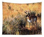 Pronghorn Buck Tapestry