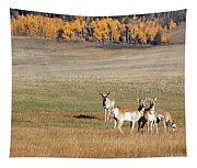 Pronghorn In The Park Tapestry