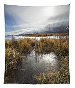 Protected Wetlands Tapestry