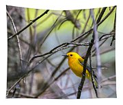 Prothonotary Warbler Tapestry
