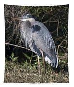 Pround Blue Heron Tapestry