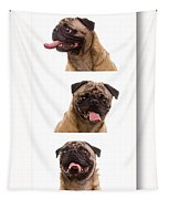 Pug Photo Booth Tapestry