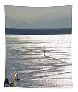 Puget Sound 2014 Tapestry