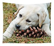 Puppy With Pine Cone Tapestry