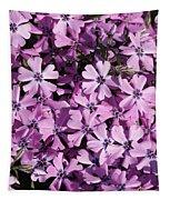 Purple Beauty Phlox Tapestry
