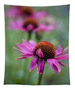 Purple Coneflowers In A Row Tapestry