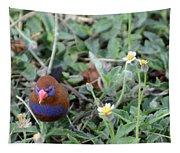 Purple Grenadier  Tapestry
