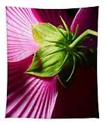 Purple Hibiscus Shot From Behind. Tapestry
