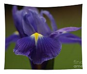 Purple Iris 6 Tapestry