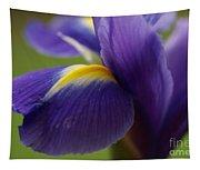 Purple Iris 8 Tapestry