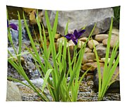 Purple Irises Growing In Waterfall Tapestry
