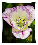 Purple Lace Tulip Time Tapestry