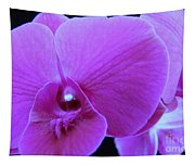 Purple Orchid 7 Tapestry