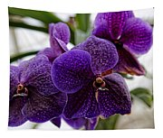Purple Orchids Tapestry