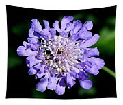 Pin Cushion Tapestry