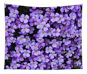Purple Rockcress Tapestry