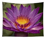 Purple Tropical Water Lily Tapestry