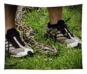 Python Snake In The Grass And Running Shoes Tapestry