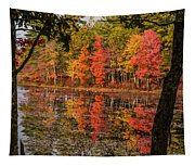 Quabbin Reservoir Fall Foliage Tapestry