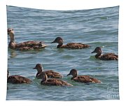 Quackers Tapestry