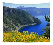 D2m5622-rabbit Brush At Crater Lake Tapestry