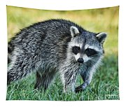 Raccoon Buddy Tapestry