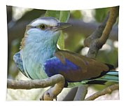 Racket Tailed Roller Tapestry