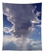 Rain Cloud Tapestry