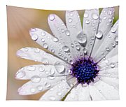Rain Soaked Daisy Tapestry