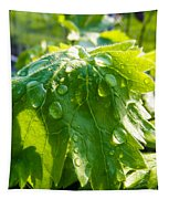 Rain Soaked Leaf Tapestry