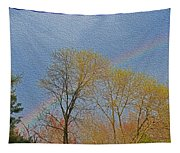 Rainbow In Spring Tapestry