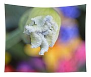 Rainbow Iris Tapestry