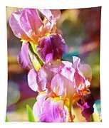 Rainbow Irises Tapestry