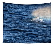 Rainbow Spout Tapestry