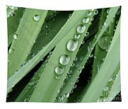 Raindrops On Blades Of Grass Tapestry