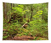 Rainforest Green Everywhere Tapestry