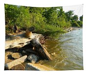 Raw Lake Erie Shore Tapestry