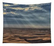 Rays On The Palouse Tapestry