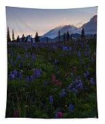 Rays Over Rainier Tapestry