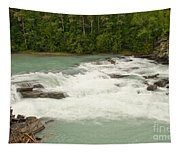 Rearguard Falls Of The Fraser River Tapestry