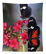 Red And White Longwing Butterflies  Tapestry
