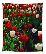 Red And White Tulip Art Tapestry