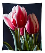 Red And White Tulips Tapestry