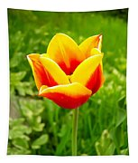 Red And Yellow Tulip Tapestry